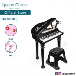 Iguana Online Miniature Learning Musical Electronic Organ Piano Keyboard with Recordable Microphone (Black)