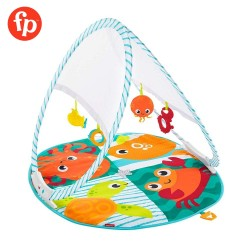 Fisher-Price Fold and Go Portable Gym