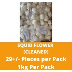 CN Frozen Squid Flower (Cleaned) (Approx 29 Pcs) 1kg per Pack CN Frozen Seafood Sotong Fish