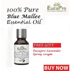 Eucapro Eucalyptus Blue Mallee Essential Oil 15ml