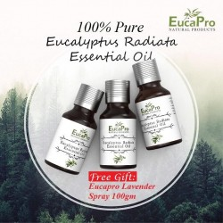 Eucapro Eucalyptus Radiata Essential Oil 15ml x 3units