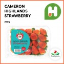 Fresh Strawberry Local 250g/pack (Sold per Pack)