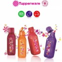 Tupperware Sparkle Square Eco Bottle Fliptop Cap (500ml) - 1pcs (Red)