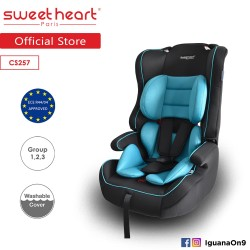 Sweet Heart Paris Safety Car Seat Booster (Black Teal) with Side Protection