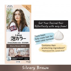 Liese Creamy Bubble (Natural Series) - Silvery Brown