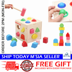 Little B House Shape Sorting Box with Wooden Hammer Wooden Toy - BT15