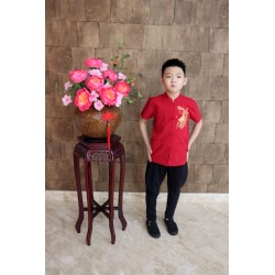 Kiwi Kiwi CNY Short Sleeve Tunic with Embroidery for Boys