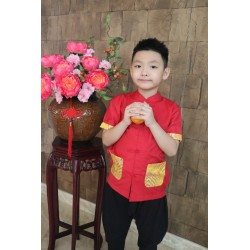 Kiwi Kiwi Chinese New Year Short Sleeve Tunic for Boys
