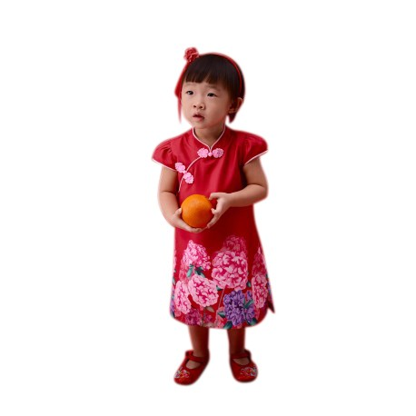 Kiwi Kiwi CNY Cheongsam/Qipao with Digital Printed for Babies