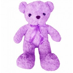 Maylee Cute Plush Teddy Bear 42cm Purple (Bear R-purple)