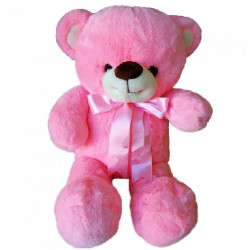 Maylee Sweet Big Plush Teddy Bear 60cm (Pink)