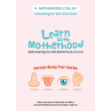 Motherhood Flash Card (Body Part) - Series 3
