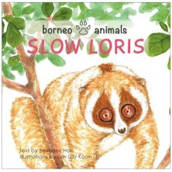OYEZ Borneo Animals series: Slow Loris