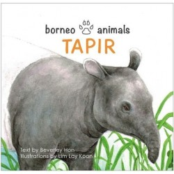 OYEZ Borneo Animals series: Tapir