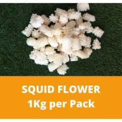 Squid flower (1kg Per Pack)