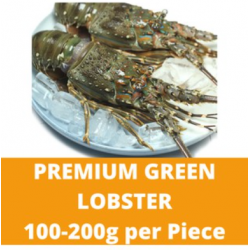 Premium Green Lobster (100-200g/piece)