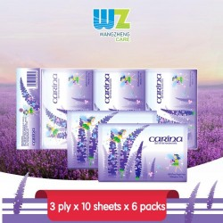 Carina 100% Virgin Pulp 3ply Wallet Tissue (3ply x 10's x 6packs)